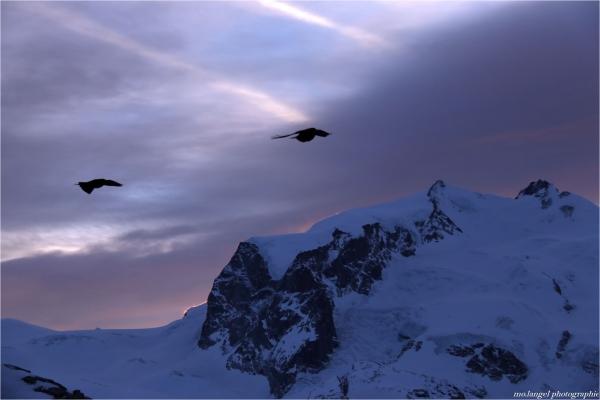 Vol au-dessus des sommets