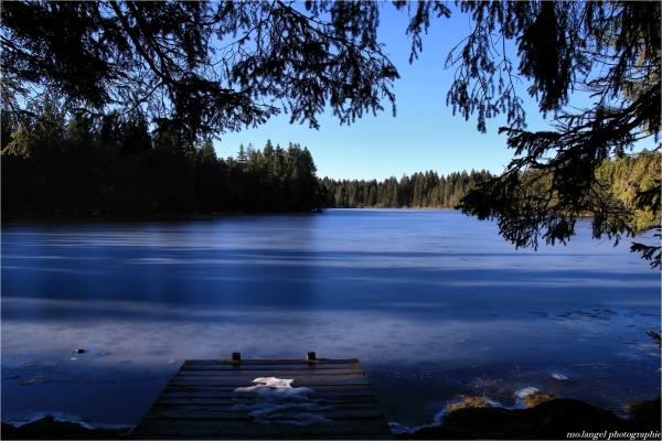 Sur l'étang gelé
