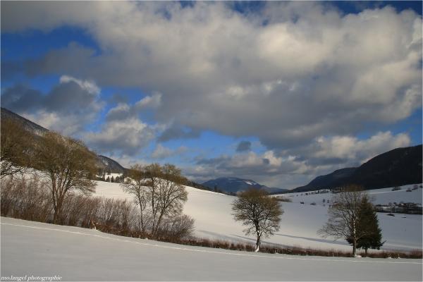 Manteau blanc sur le Vallon