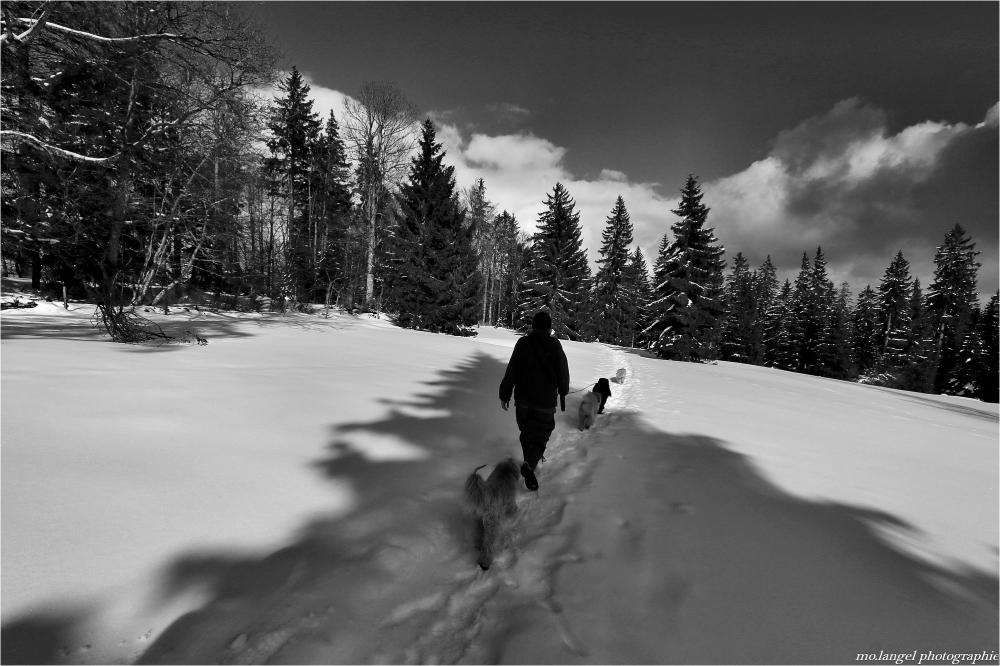 Randonnée hivernale