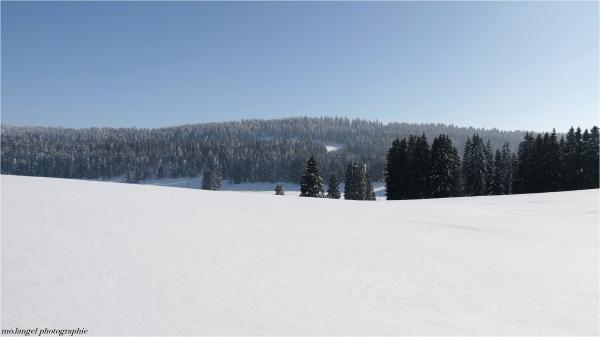 Les douces courbes du Jura