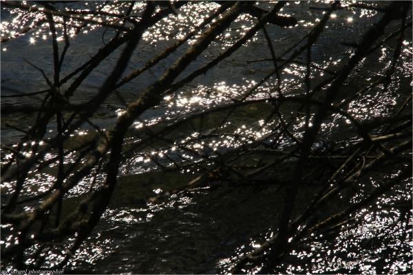 La lumière de la rivière
