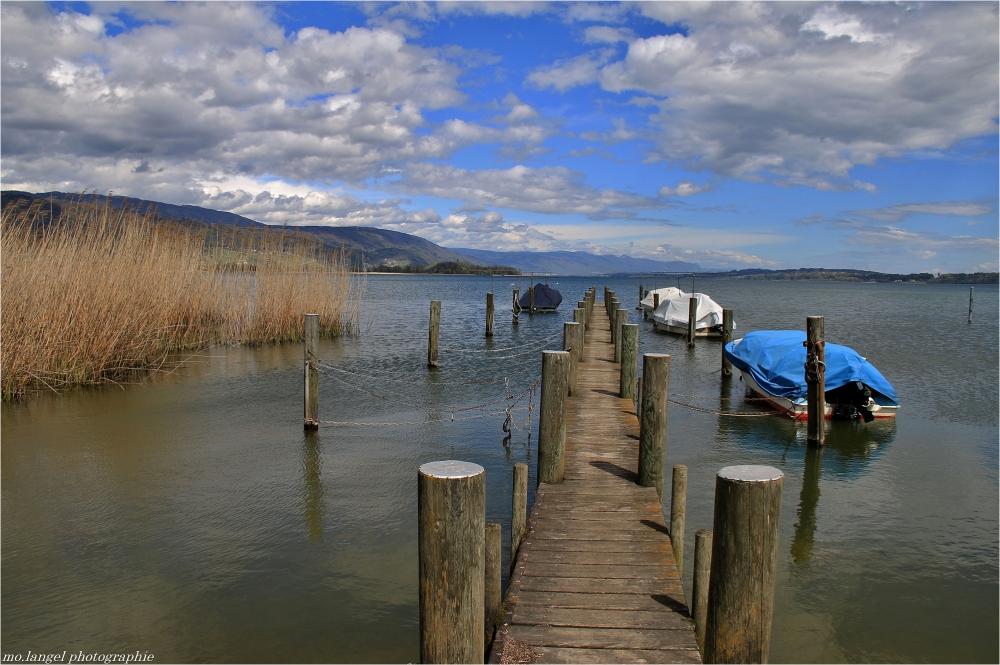 Le lac en frissone
