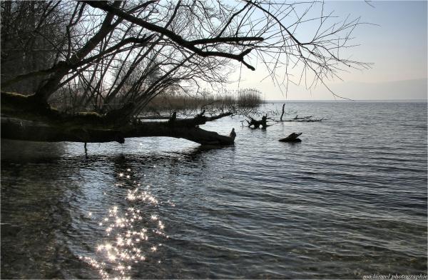 Le lac aux étoiles
