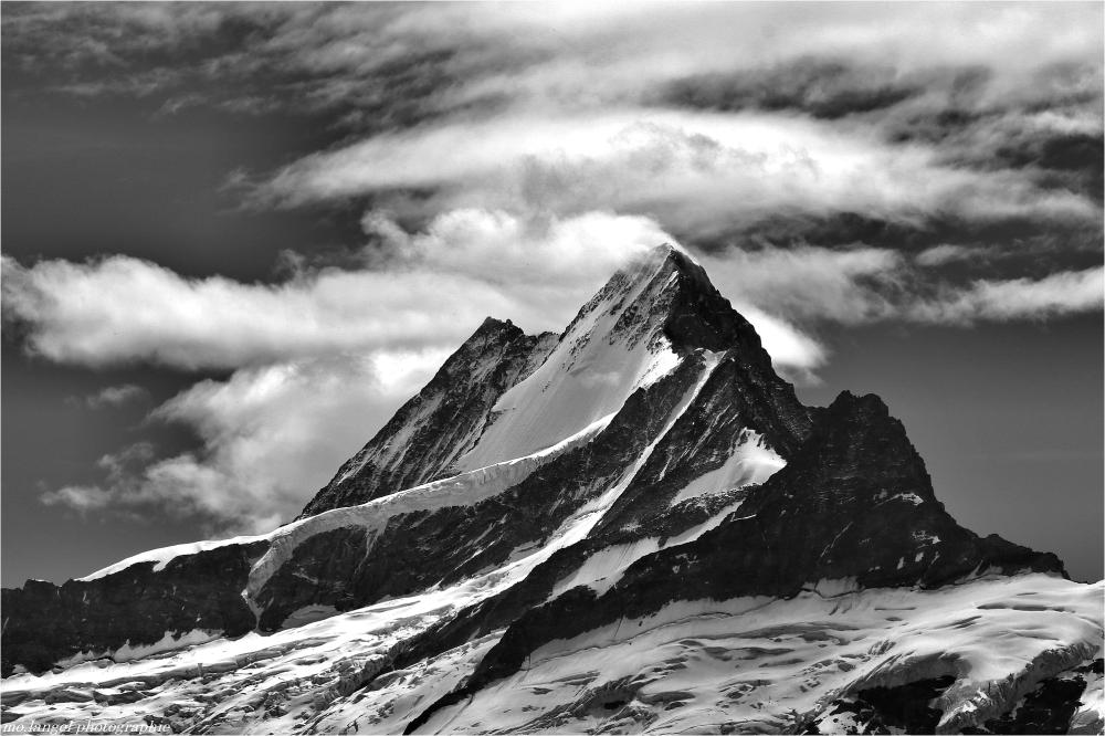 L'appel de la montagne