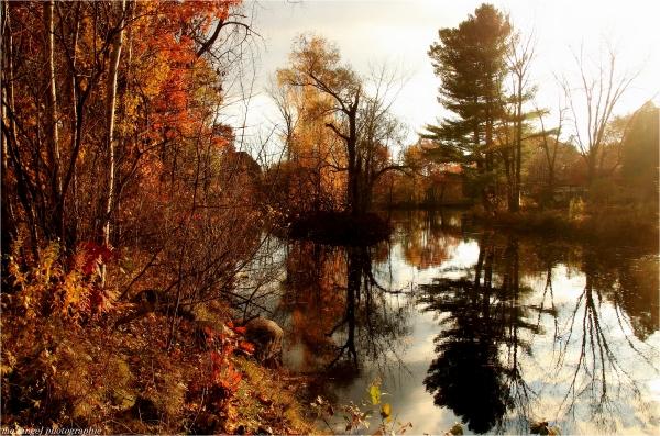 Le petit lac de St-Bruno