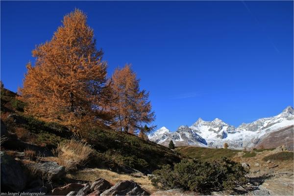 Décor alpin
