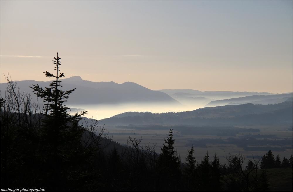La plaine sous la brume
