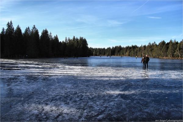 Sur un étang, ils patinaient...