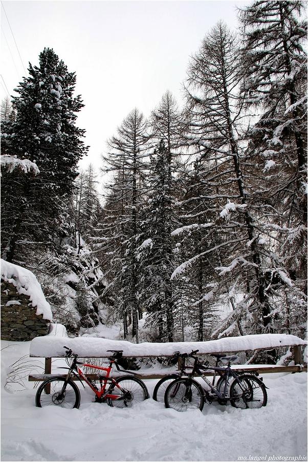 Bicyclettes de neige