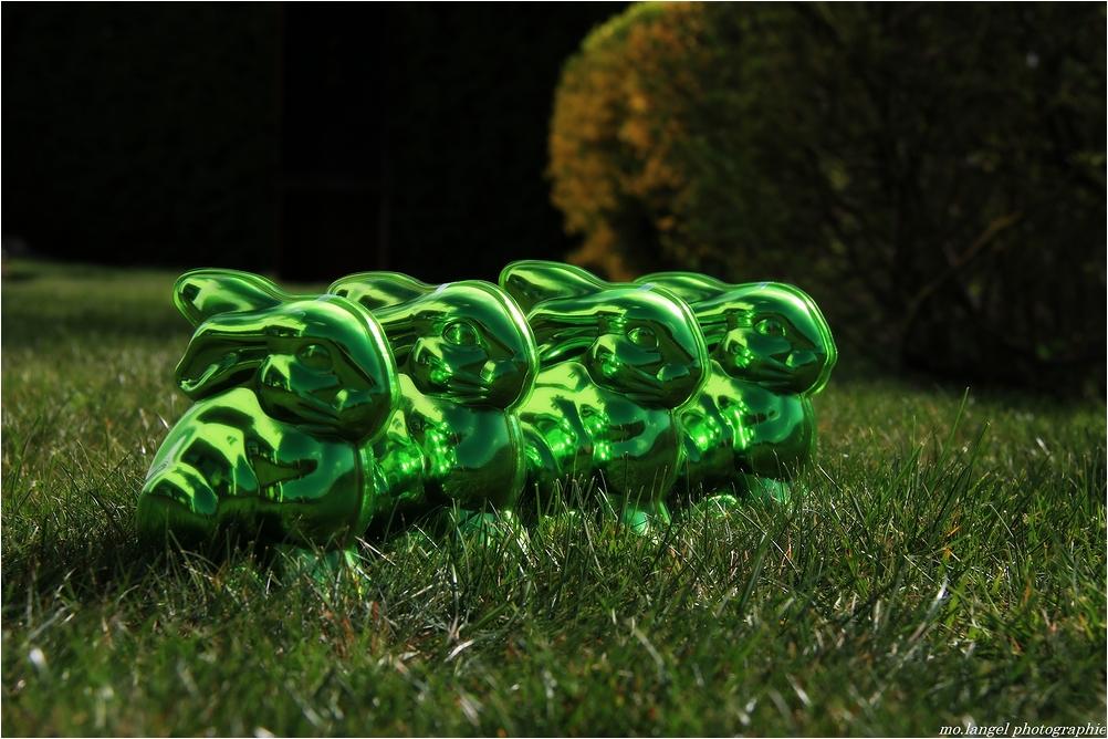 Les quatre petits lapins verts