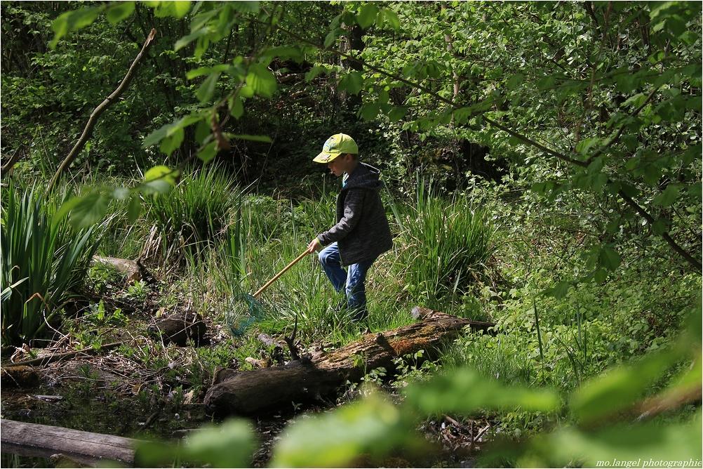 A la pêche au triton