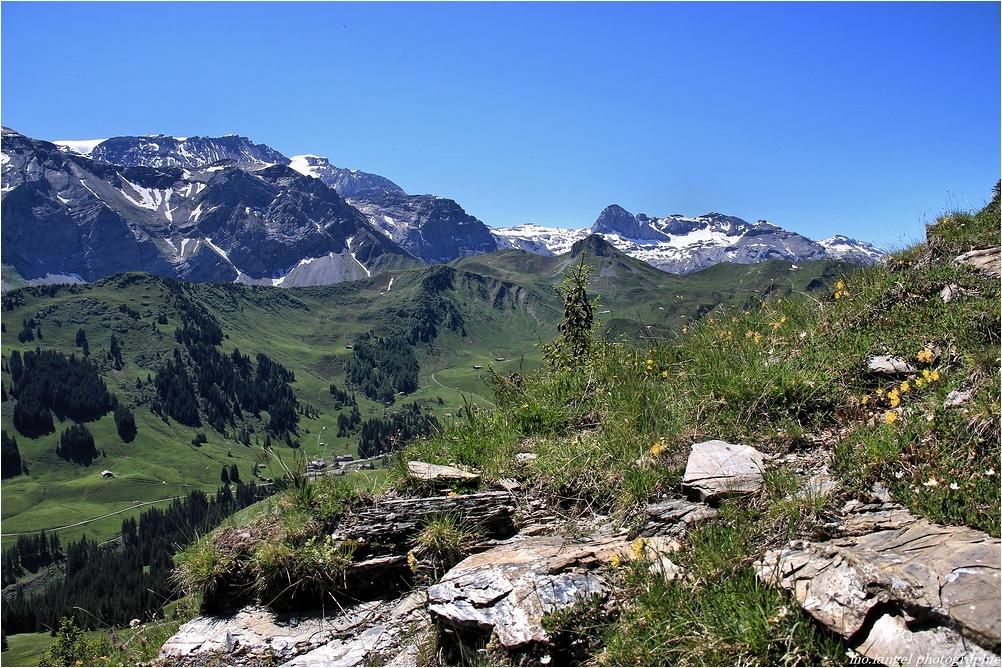 Sur les sentiers de montagnes