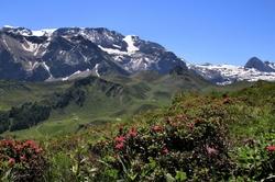 Sur les sentiers de montagnes (2)