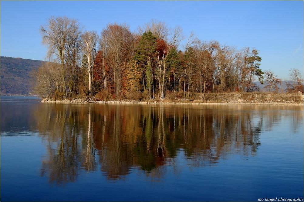 Reflet d'un automne finissant