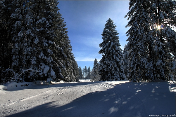 Départ sur les rails de l'hiver