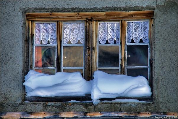Les dentelles de l'hiver
