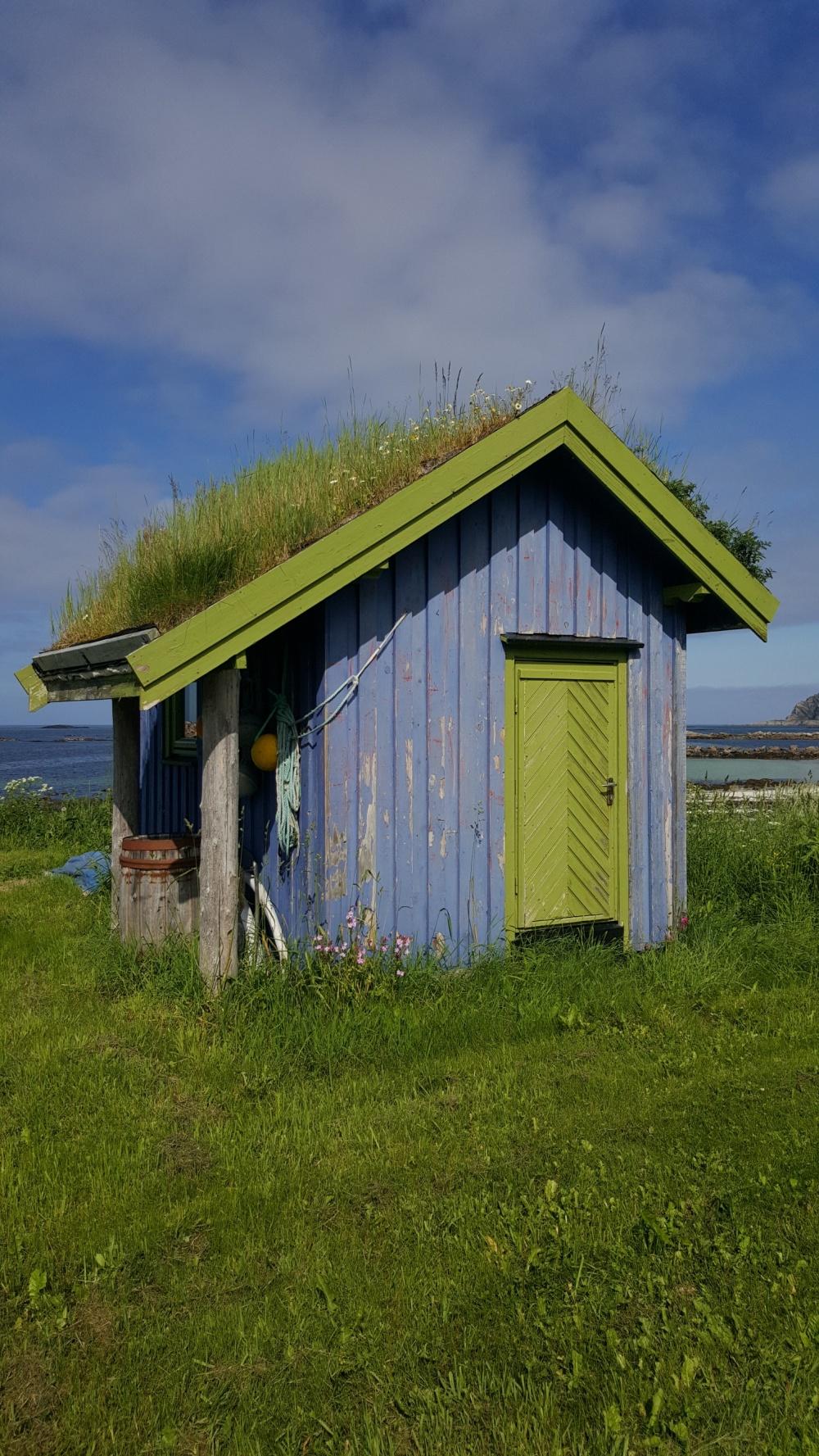 La petite maison au toit en herbe