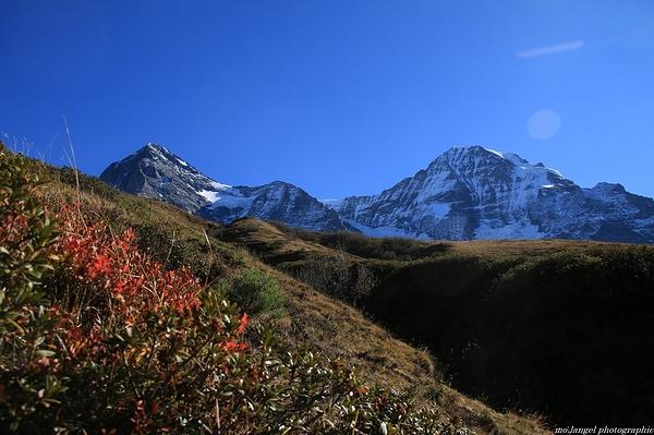 La montagne en automne