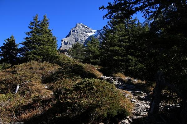 Le sentier de montagne