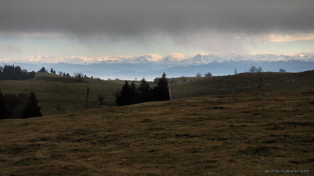 Vue sur la chaîne des Alpes