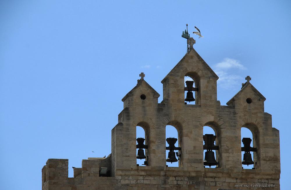 Les cloches, les croix et l'oiseau