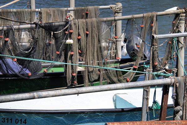 Les filets de pêche