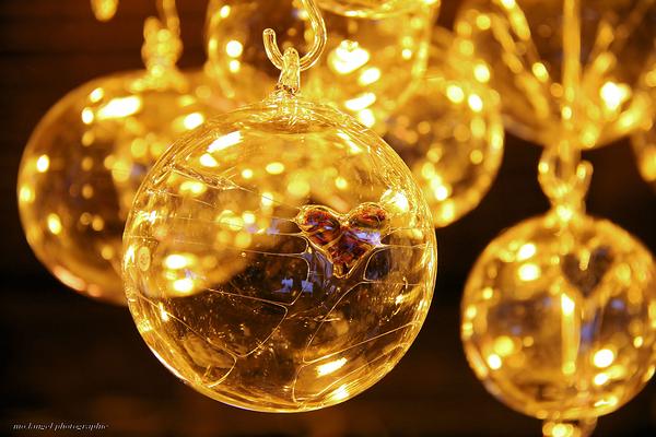 Joyeux Noël *** Merry Christmas