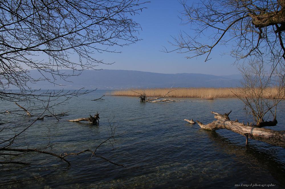 Sur les bords du lac