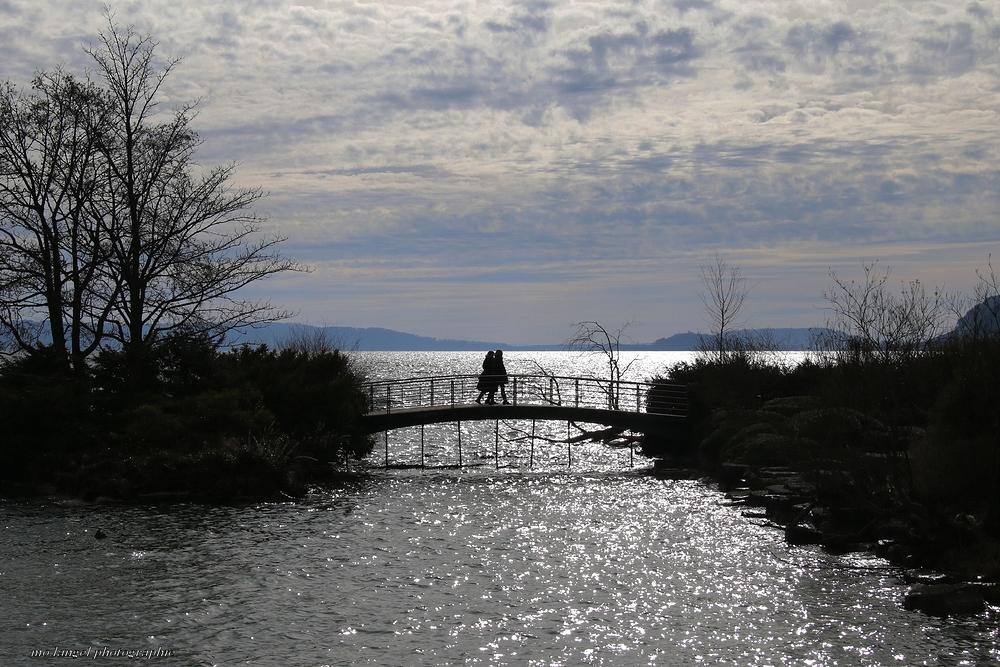 Balade sur les rives du lac #2
