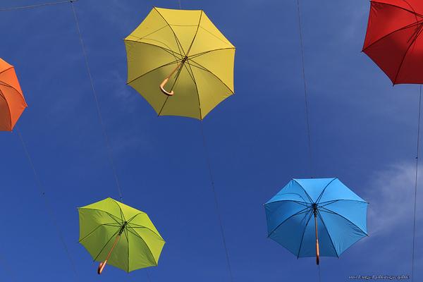 Parapluies volent