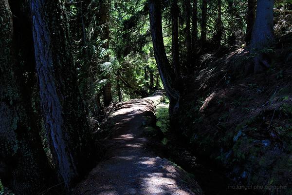 La randonnée le long du bisse