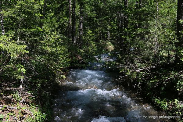 La fraîcheur de la rivière