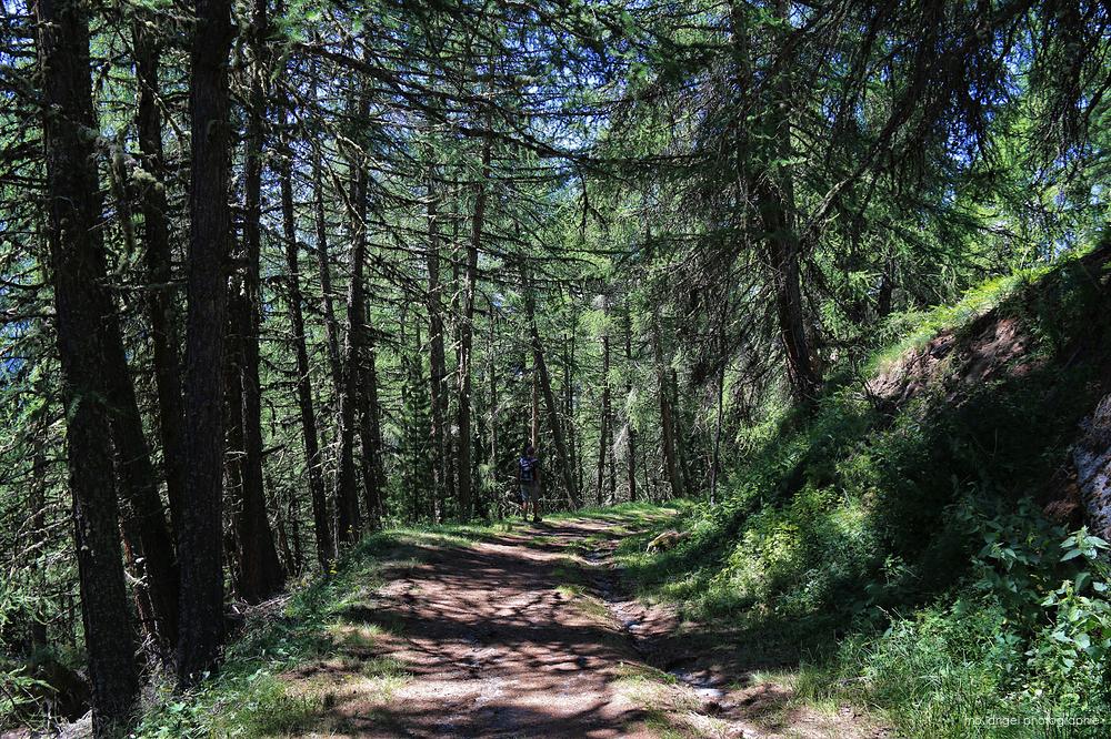 Retour de randonnée