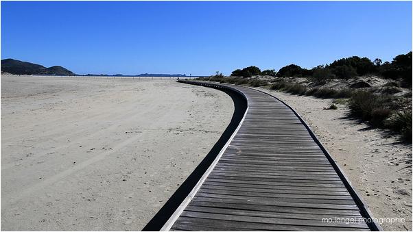 Le chemin de plage