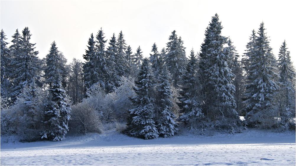 L'hiver est arrivé