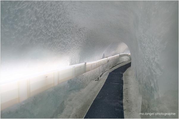 Visite du glacier