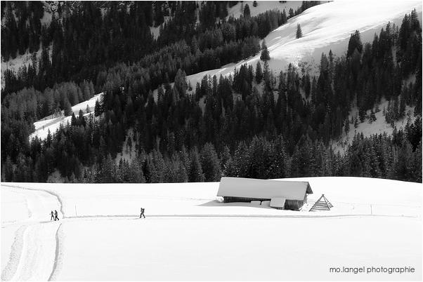 Randonnée hivernale #2