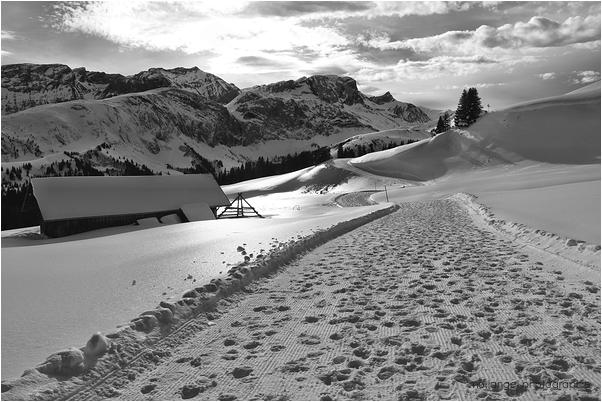 Randonnée hivernale #3
