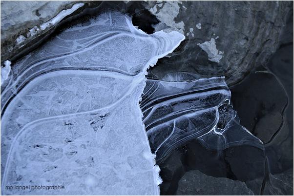 Le gel