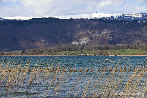Lac et montagne