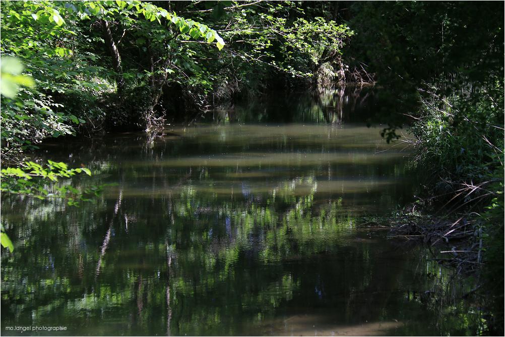 La rivière mystérieuse