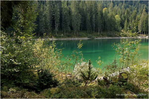 Le petit lac vert