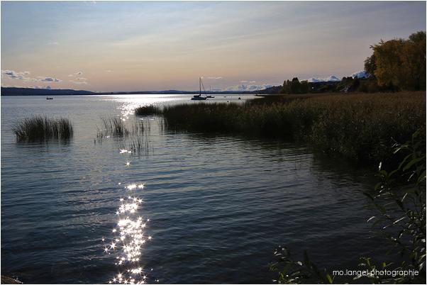 Calme sur le lac