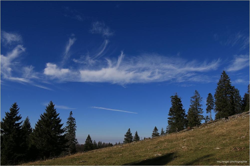 Et volent les nuages au-dessus des  sapins