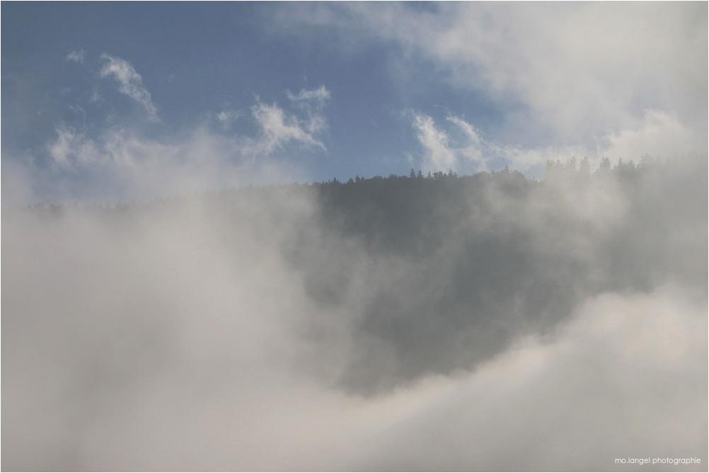 Le brouillard se lève
