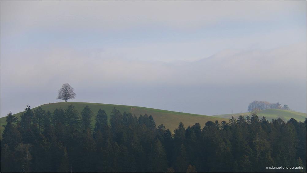 Là-haut sur la colline