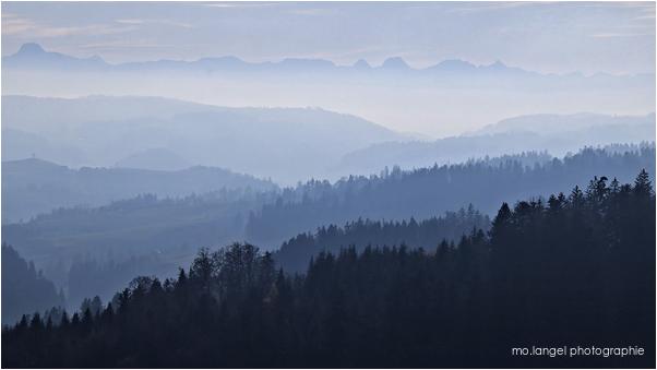 Forêts et montagnes