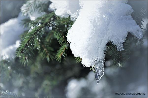 La veillée de Noël