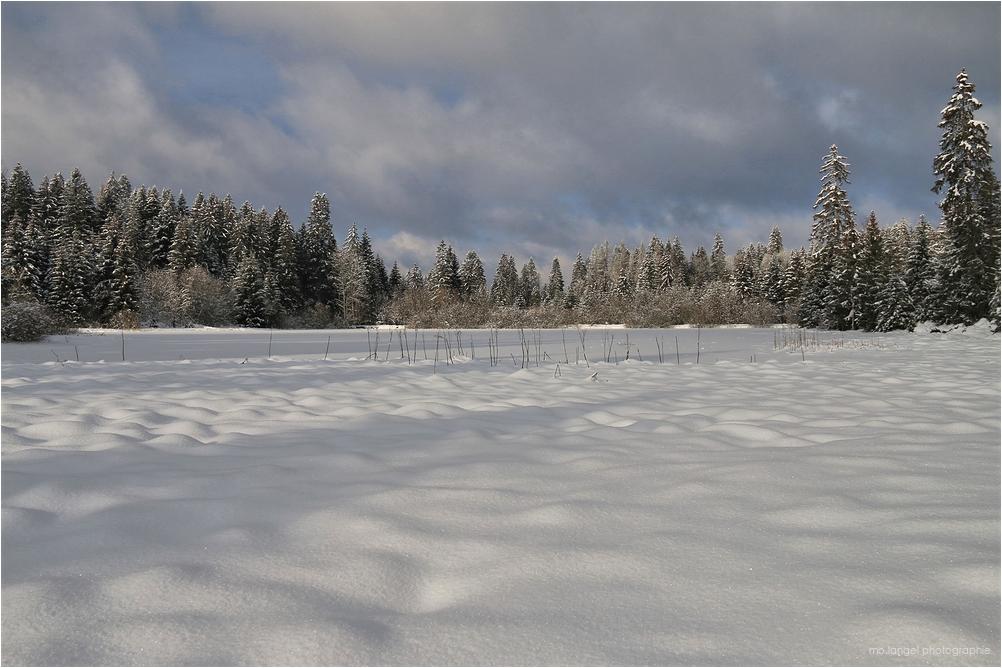 L'étang recouvert de neige